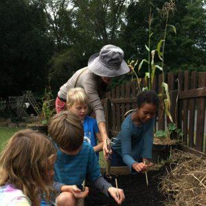 HVWS Biodynamic Gardening